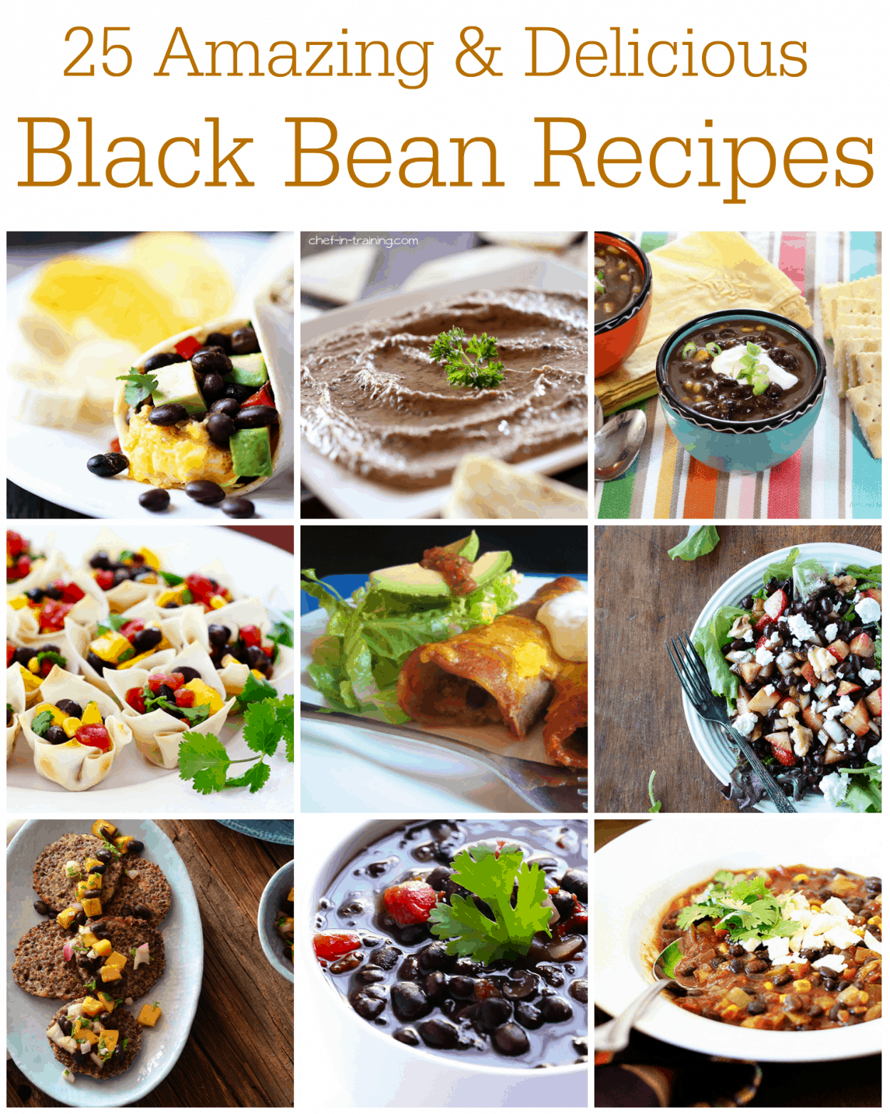 25 Amazing & Delicious Black Bean Recipes