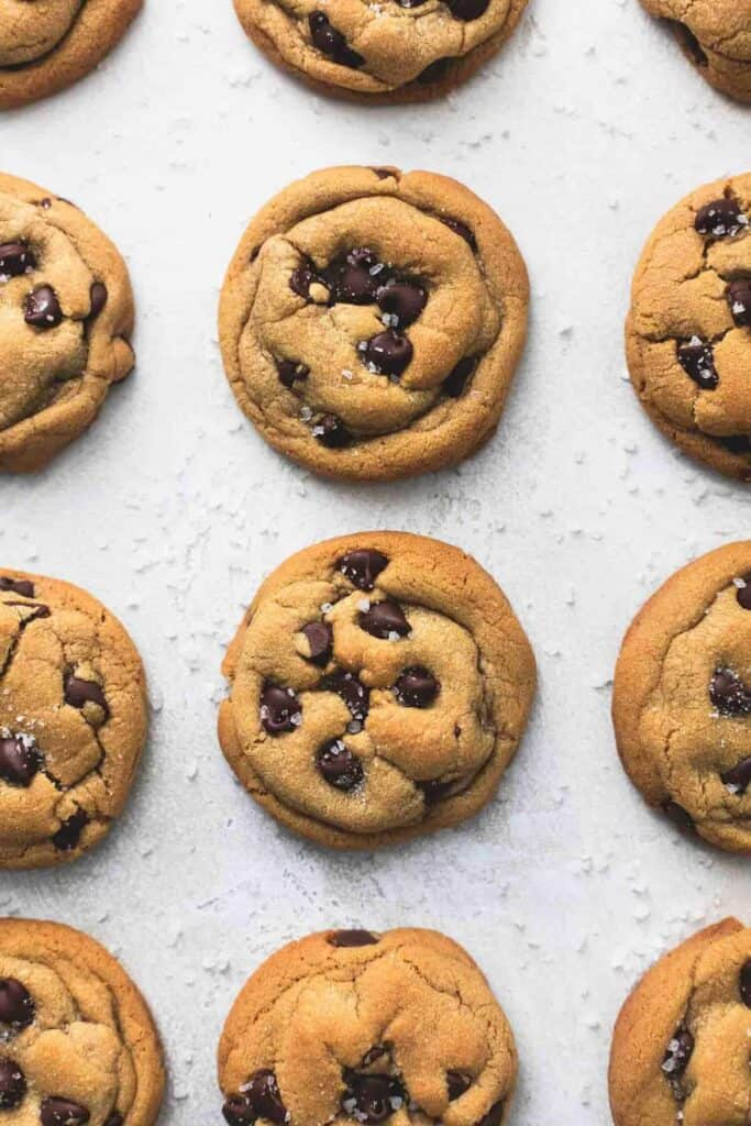 Trader Joes cookie butter recipes chocolate chip cookies